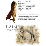 The Iron Fairies Raine