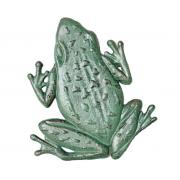 Stepping Stone Frog